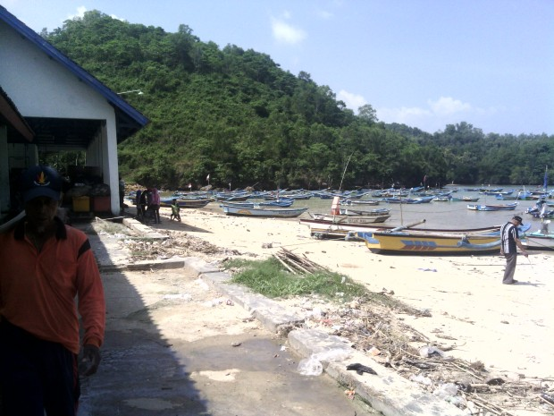 Tempat Pelelangan Ikan Pacitan 2