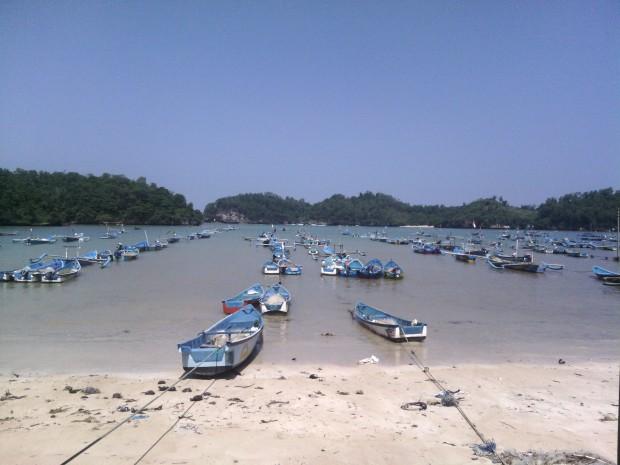Tempat Pelelangan Ikan Pacitan